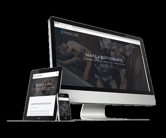 nonprofit-web-design-eureka-ca-humboldt-county-california